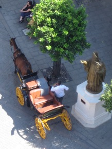 Seville Horse & Carriage
