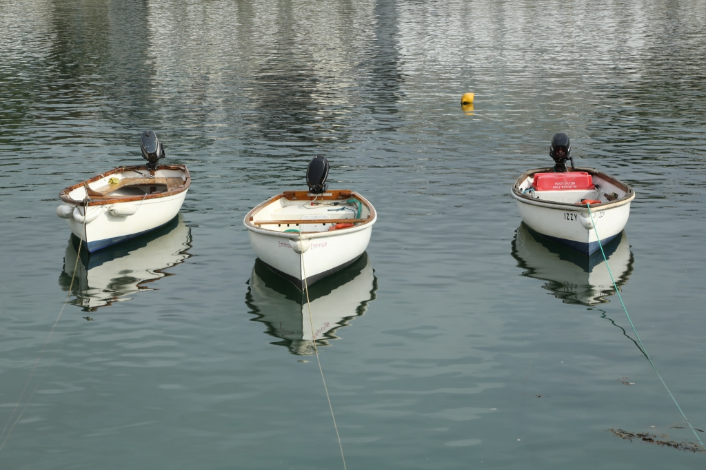 Rowing boats in St Mawes Harbour